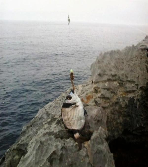 udica oceana izvora dating brest